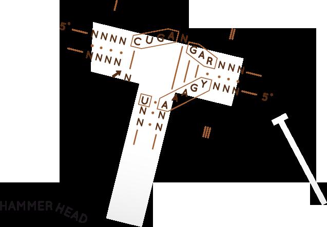 rna-as-an-enzyme