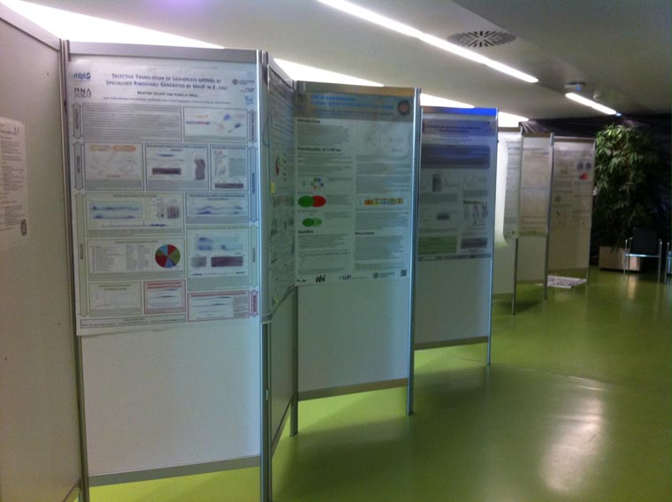 Vienna-RNA-Meeting-2013_03